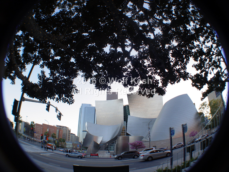 Walt Disney Concert Hall In Los Angeles Stock Photo By Wolf Kesh