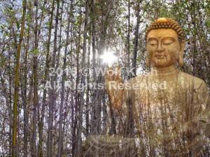 Buddha's Blessing Digital Art by Wolf Kesh